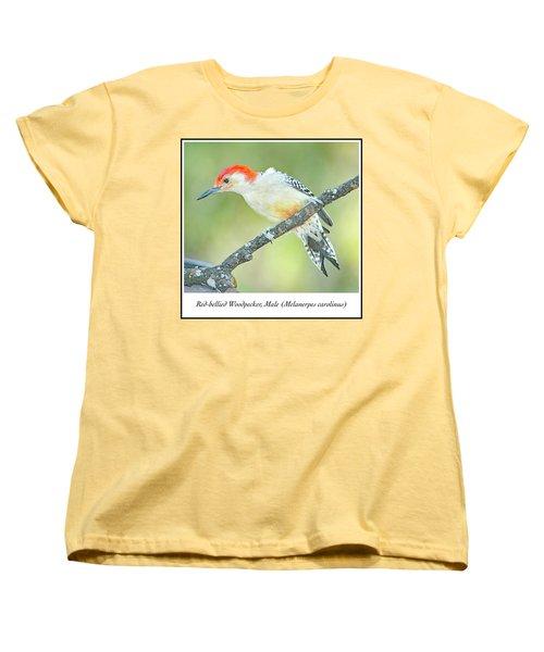 Red Bellied Woodpecker, Male Women's T-Shirt (Standard Cut) by A Gurmankin