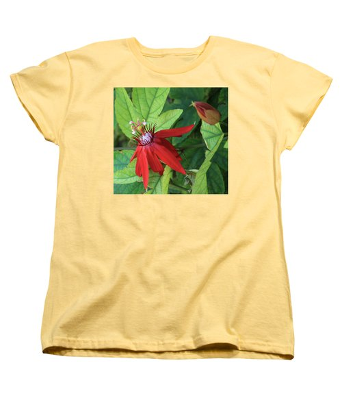 Red Passion Bloom Women's T-Shirt (Standard Cut) by Marna Edwards Flavell