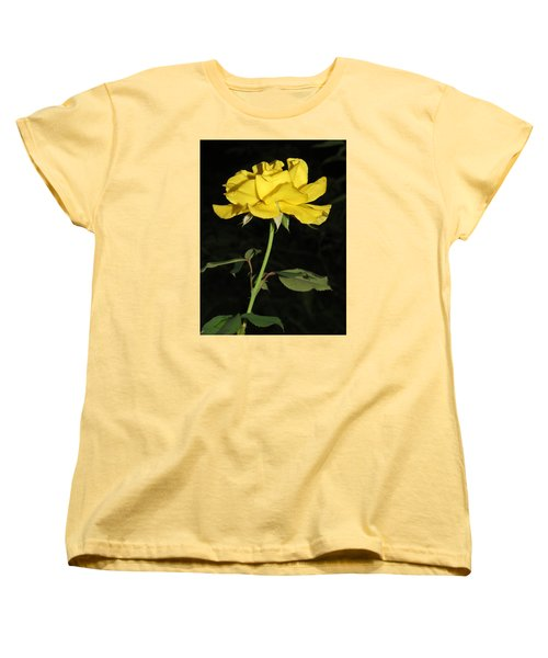 Women's T-Shirt (Standard Cut) featuring the photograph Rose 5 by Phyllis Beiser
