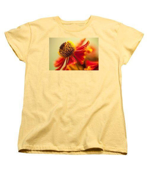 Women's T-Shirt (Standard Cut) featuring the photograph Rudbeckia Macro by Jenny Rainbow