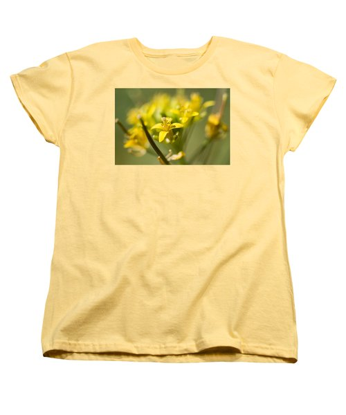 Sassy Women's T-Shirt (Standard Cut) by Hyuntae Kim