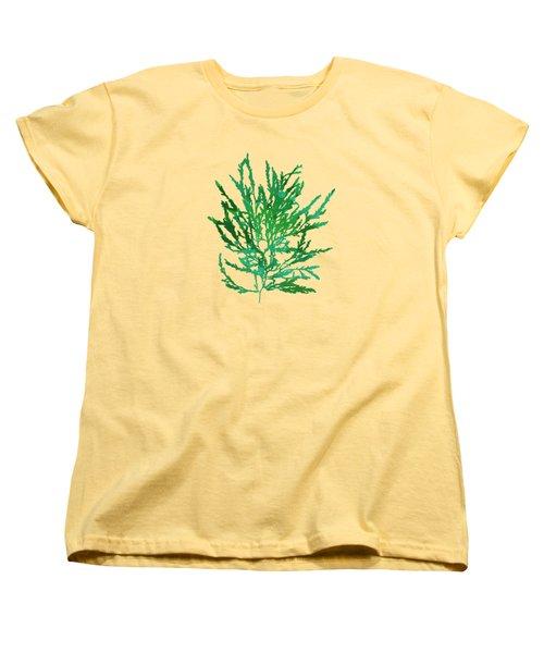 Women's T-Shirt (Standard Cut) featuring the mixed media Sea Green Seaweed Art Odonthalia Dentata by Christina Rollo