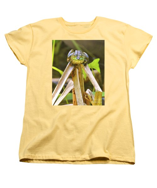 Sitting On Top Of The World Women's T-Shirt (Standard Cut) by Debbie Stahre