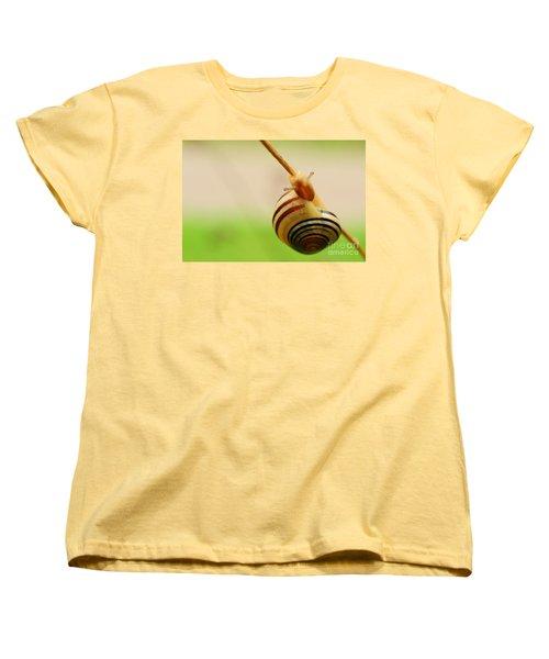 Snail  Women's T-Shirt (Standard Cut) by Joe  Ng
