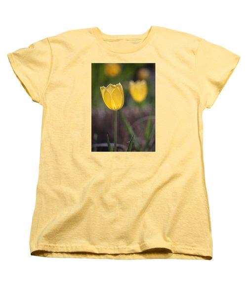 Spring Happiness Women's T-Shirt (Standard Cut) by Morris  McClung
