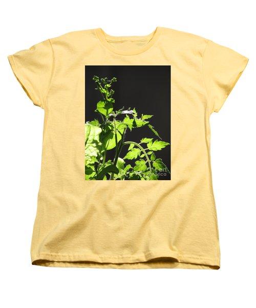 Spring103 Women's T-Shirt (Standard Cut) by En-Chuen Soo