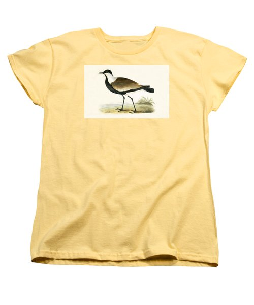 Spur Winged Plover Women's T-Shirt (Standard Cut) by English School