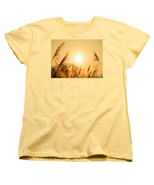 Sun Women's T-Shirt (Standard Cut) by Daniel Heine