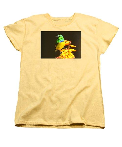 Sunbird Women's T-Shirt (Standard Cut) by Betty-Anne McDonald