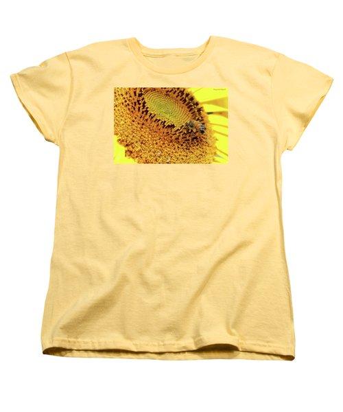 Sunflower 001 Women's T-Shirt (Standard Cut) by Kevin Chippindall