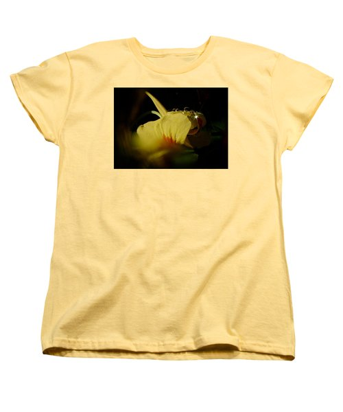 Sunshine In The Bubble Women's T-Shirt (Standard Cut) by Richard Cummings