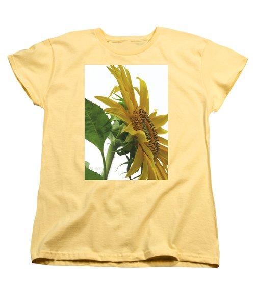 Sunshine In The Garden 25 Women's T-Shirt (Standard Cut) by Brooks Garten Hauschild