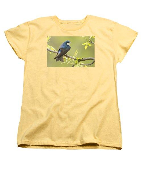 Swallow Women's T-Shirt (Standard Cut) by Mircea Costina Photography