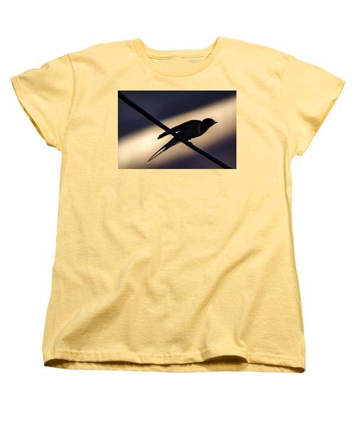 Swallow Speed Women's T-Shirt (Standard Cut) by Rainer Kersten