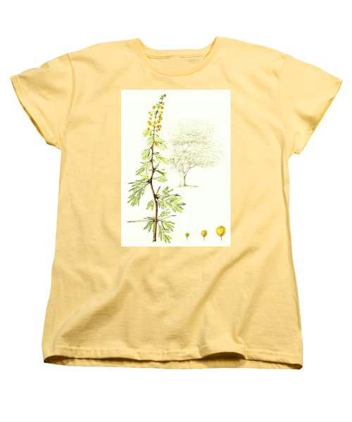 Women's T-Shirt (Standard Cut) featuring the painting Sweet Thorn Botanical Illustration by Heidi Kriel