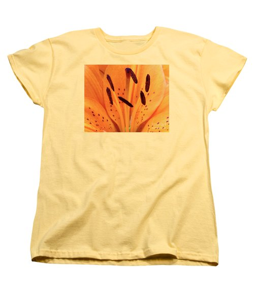 Tiger Macro Women's T-Shirt (Standard Cut) by Baggieoldboy