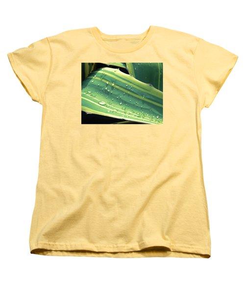 Toboggan Women's T-Shirt (Standard Cut) by Beto Machado