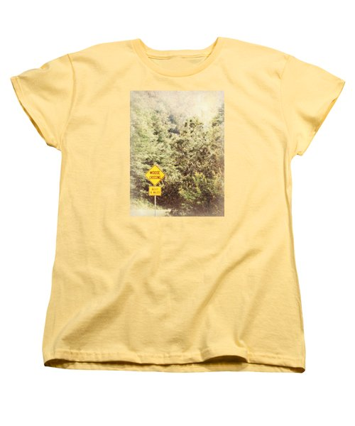 Vermont In Winter Women's T-Shirt (Standard Cut) by Robin Regan