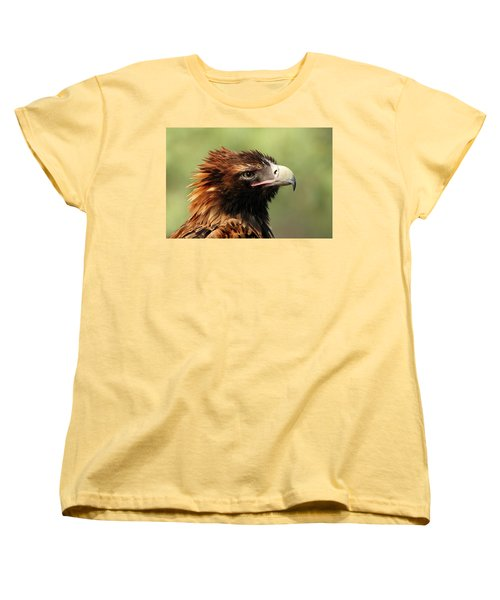 Wedge-tailed Eagle Women's T-Shirt (Standard Cut) by Marion Cullen