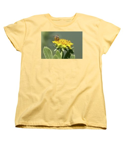 Yumm Pollen Women's T-Shirt (Standard Cut) by Christopher L Thomley