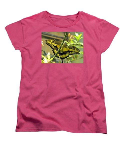 Giant Swallowtail Women's T-Shirt (Standard Cut) by Jennifer Wheatley Wolf