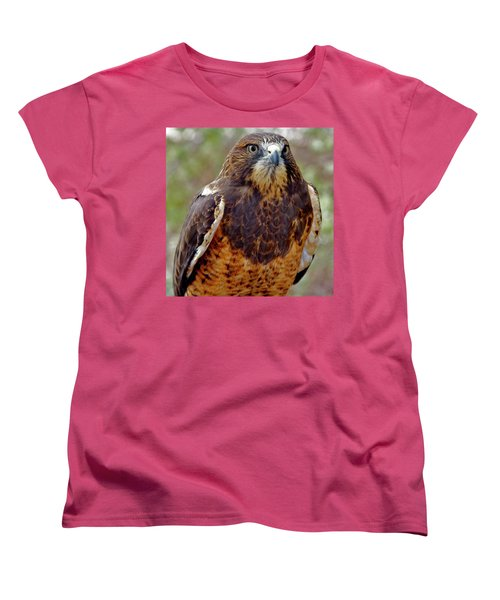 Swainson's Hawk Women's T-Shirt (Standard Cut) by Ed  Riche