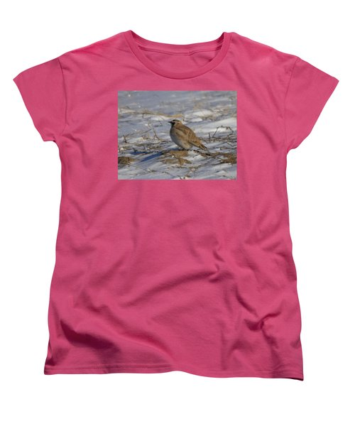 Winter Bird Women's T-Shirt (Standard Cut) by Jeff Swan