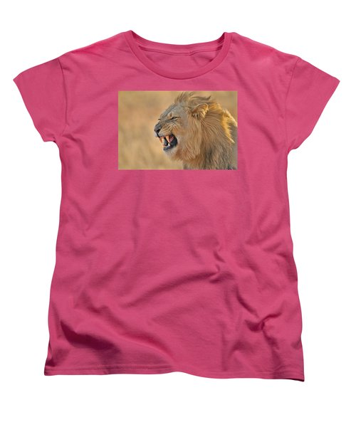 120118p081 Women's T-Shirt (Standard Cut) by Arterra Picture Library