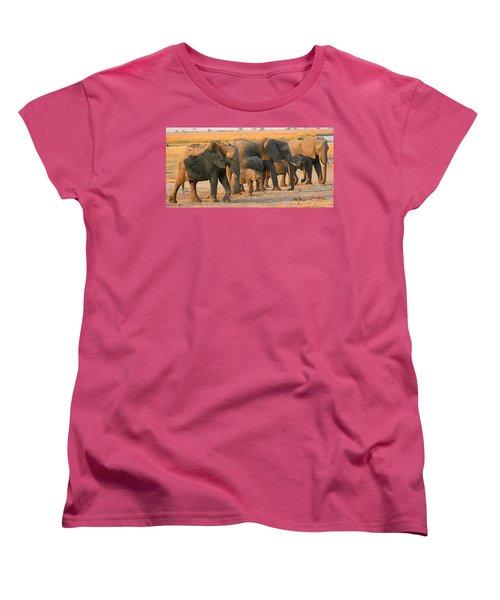 Women's T-Shirt (Standard Cut) featuring the photograph Kalahari Elephants by Amanda Stadther
