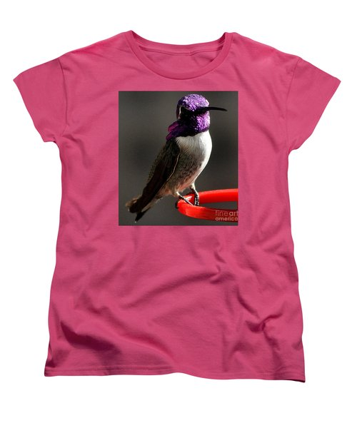 Women's T-Shirt (Standard Cut) featuring the photograph Male Costa's On Perch by Jay Milo