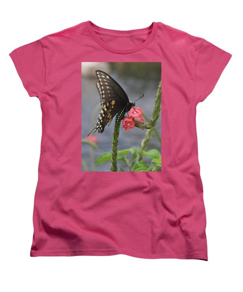 A Pause In Flight Women's T-Shirt (Standard Cut) by Judith Morris