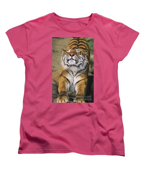 A Tough Day Siberian Tiger Endangered Species Wildlife Rescue Women's T-Shirt (Standard Cut) by Dave Welling