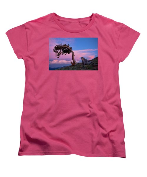A Westerly Wind Women's T-Shirt (Standard Cut) by Jim Garrison