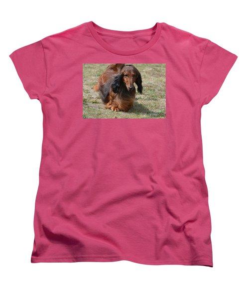 Adorable Long Haired Daschund Dog Women's T-Shirt (Standard Cut) by DejaVu Designs