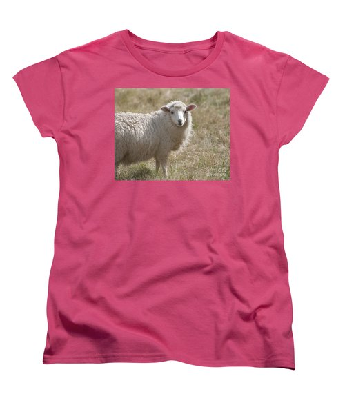 Adorable Sheep Women's T-Shirt (Standard Cut)