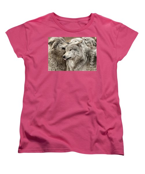 Women's T-Shirt (Standard Cut) featuring the photograph Adult Timber Wolf by Wolves Only