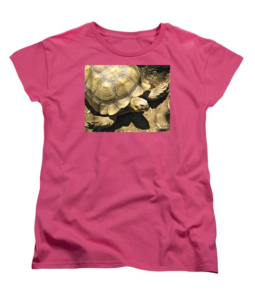 African Spurred Tortoise Women's T-Shirt (Standard Cut) by CML Brown