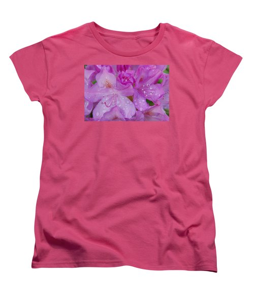 Women's T-Shirt (Standard Cut) featuring the photograph After The Rain by Aimee L Maher Photography and Art Visit ALMGallerydotcom