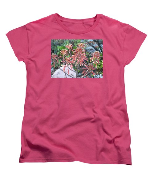 Women's T-Shirt (Standard Cut) featuring the photograph Aloe In Bloom by Belinda Lee