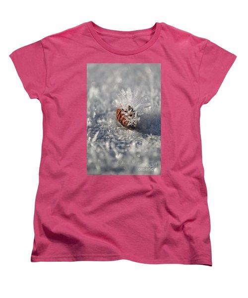 Arctic Pine Cone Porcupine Women's T-Shirt (Standard Cut) by Brian Boyle
