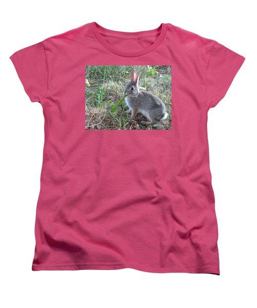 Baby Bunny Eating Dandelion #01 Women's T-Shirt (Standard Cut) by Ausra Huntington nee Paulauskaite