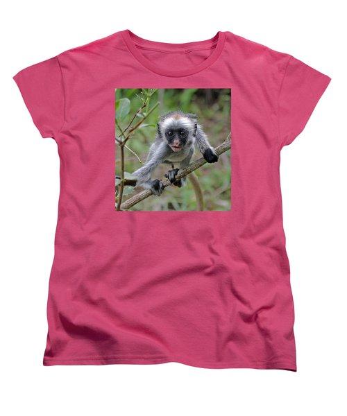 Baby Red Colobus Monkey Women's T-Shirt (Standard Cut) by Tony Murtagh