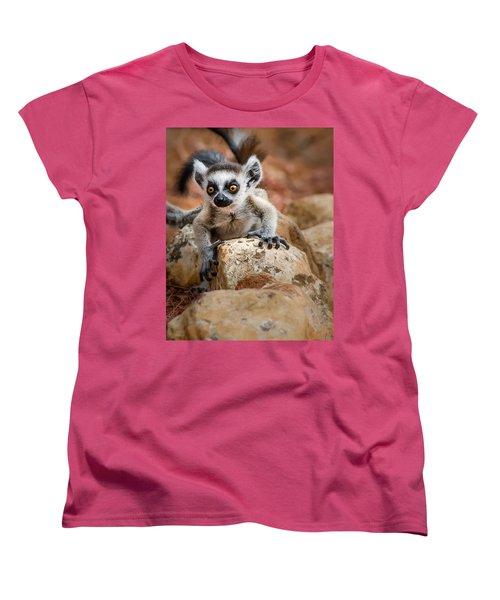 Baby Ringtail Lemur Women's T-Shirt (Standard Cut) by Linda Villers