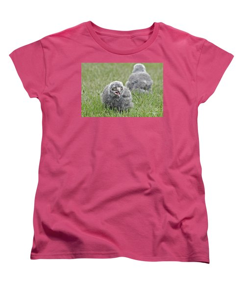 Baby Snowy Owls Women's T-Shirt (Standard Cut) by JT Lewis