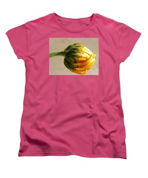 Women's T-Shirt (Standard Cut) featuring the photograph Baby Spider Mum by Deb Halloran
