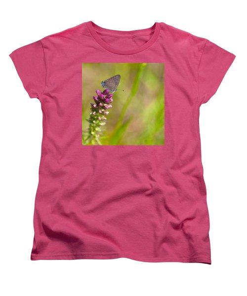 Banded Hairstreak Butterfly Women's T-Shirt (Standard Cut) by Melinda Fawver