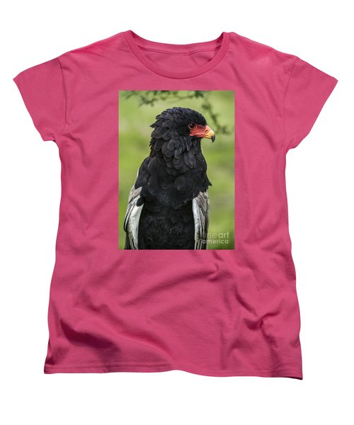 Bateleur 3 Women's T-Shirt (Standard Cut) by Arterra Picture Library