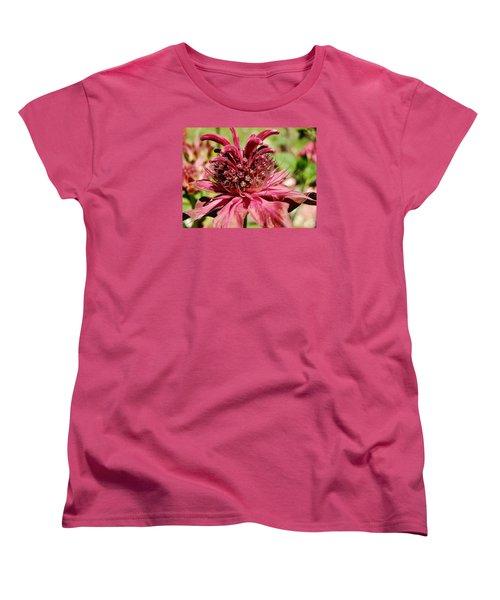 Bee Balm Details Women's T-Shirt (Standard Cut) by VLee Watson