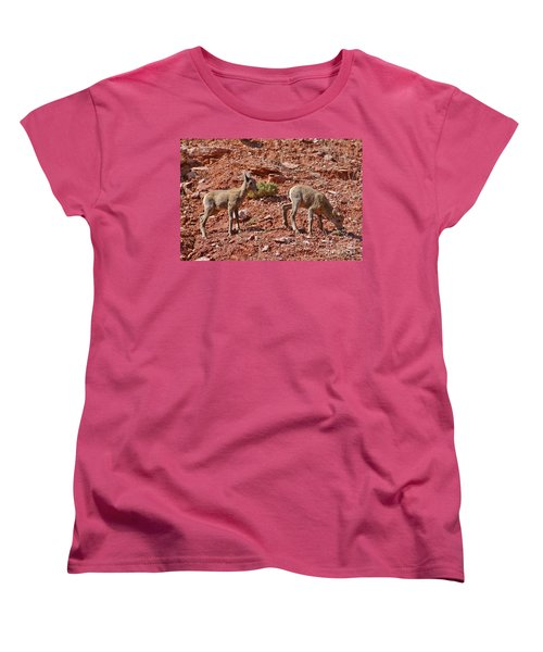 Women's T-Shirt (Standard Cut) featuring the photograph Bighorn Canyon Sheep Wyoming by Janice Rae Pariza