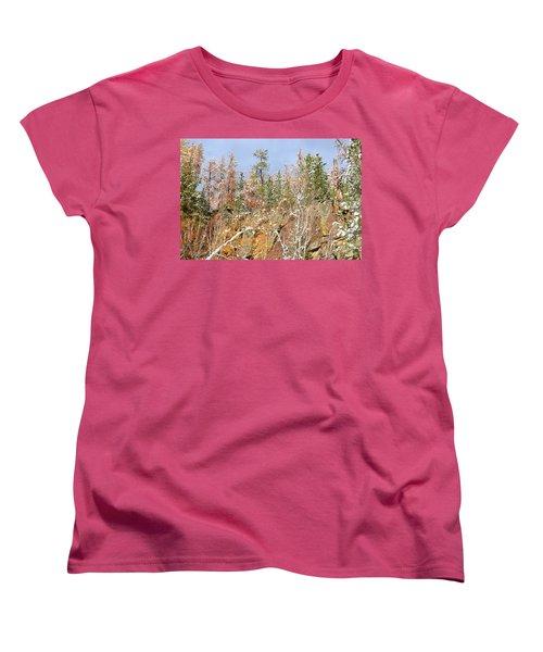 Black Hills Color Palette Women's T-Shirt (Standard Cut) by Clarice  Lakota